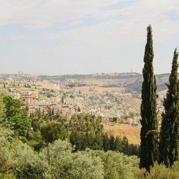 Однодневный тур в Израиль