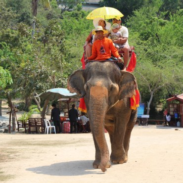 Захватывающие факты про Таиланд