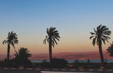 Отели Туниса с талассотерапией